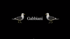 Gabbiani The Series Pilot